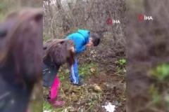 Metropol ördek hayatını kaybetti