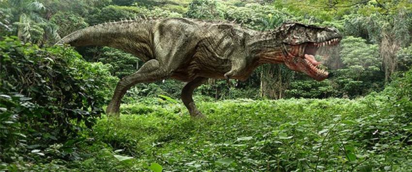 MTA dinozor iskeleti alacak