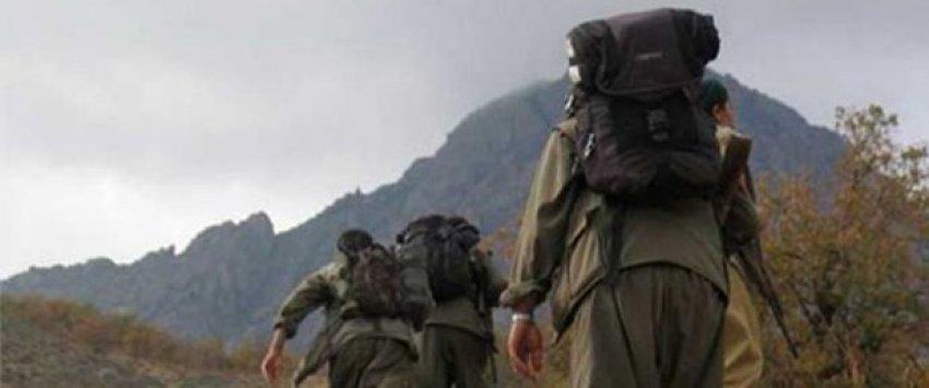 Muş'ta PKK tarafından kaçırılan 2 kişi serbest bırakıldı