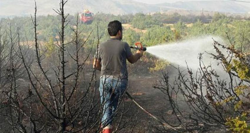 Raylardan çıkan kıvılcım ormanı yaktı