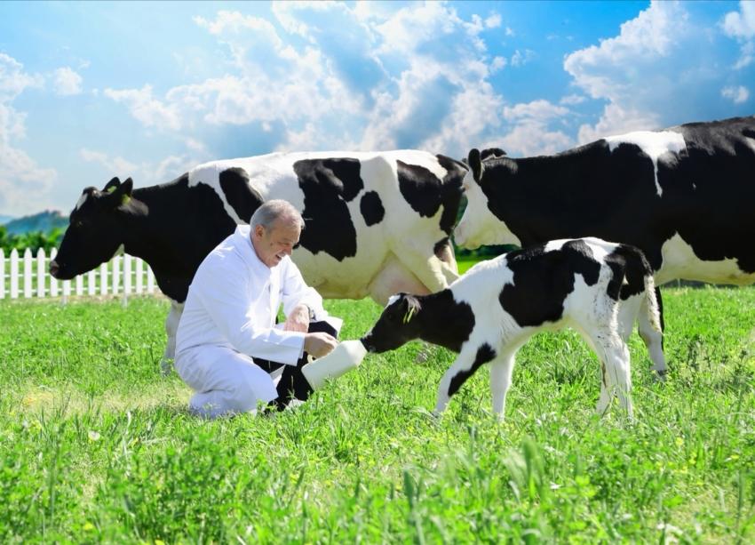 "1 Haziran Dünya Süt Günü'nü Kutlu Olsun ""Sütaş'ın Aşkı Sütaşkı"""