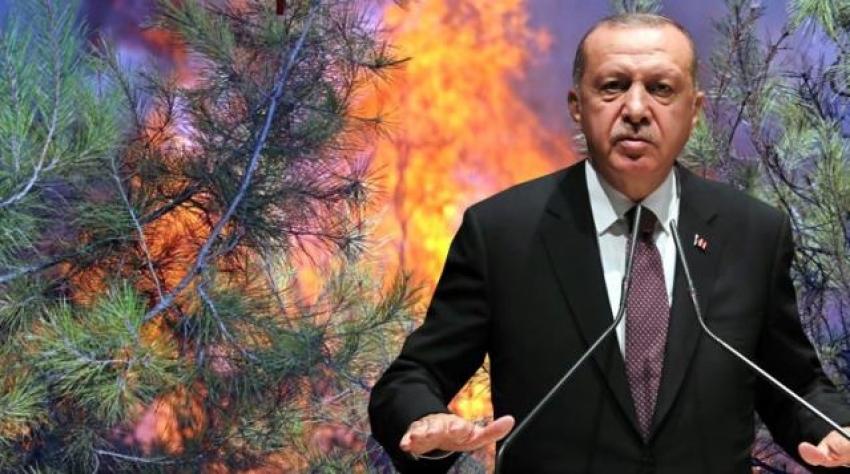 Cumhurbaşkanı Erdoğan'dan yangınlarda sabotaj iddialarına cevap