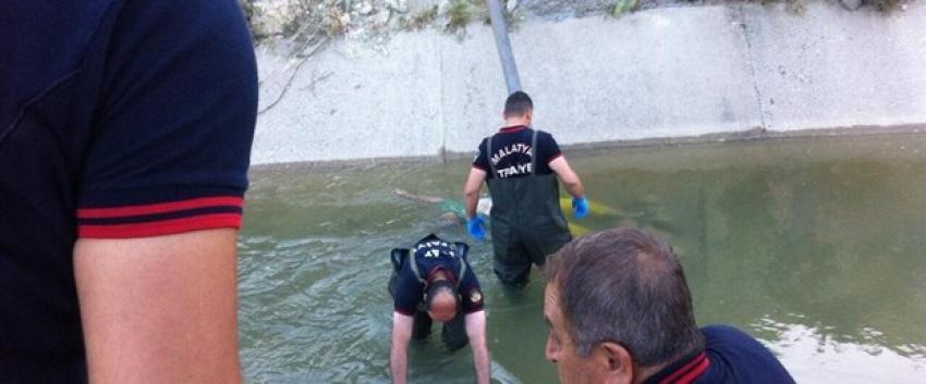 Su kanalında kadın cesedi bulundu