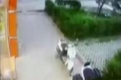 Takıntılı olduğu kadının kocası tarafından öldürüldü