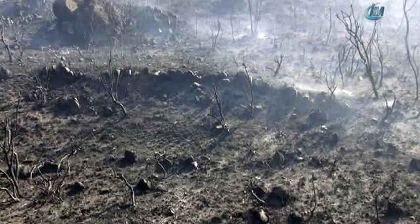 Tam 121 hektar kül oldu!