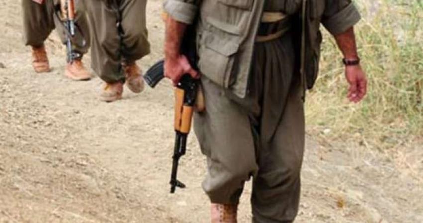 Uludere'de 7 terörist etkisiz hale getirildi
