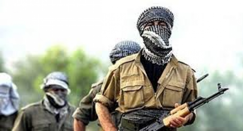 Şanlıurfa'da bir terörist güvenlik güçlerine teslim oldu