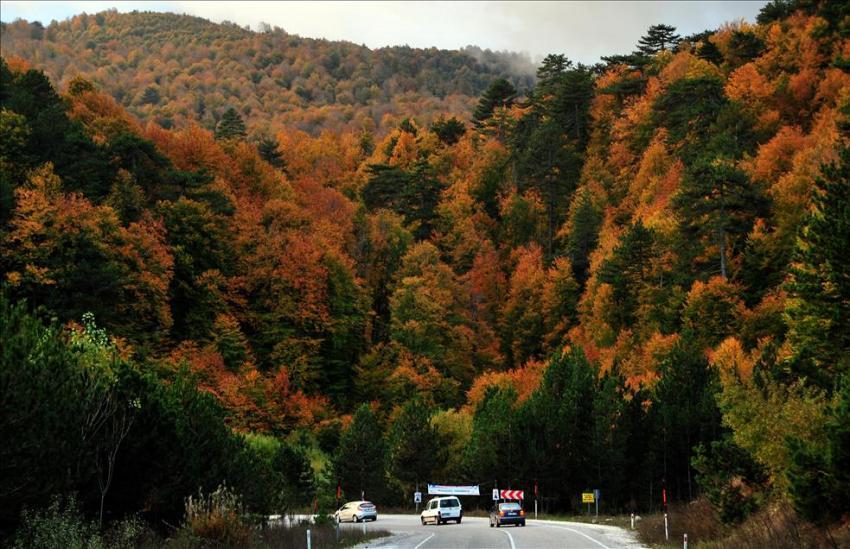 Bursa'da sonbahar