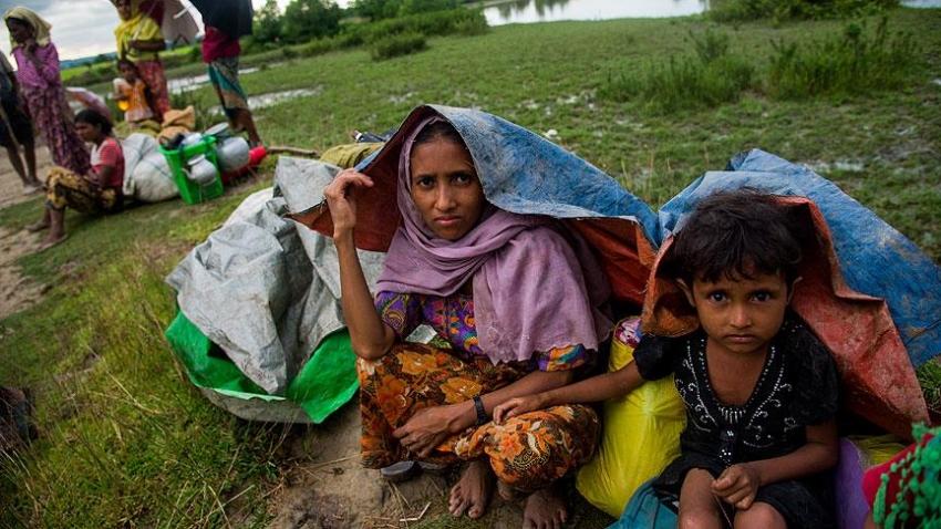 Uluslararası Göç Örgütü'nden göç açıklaması