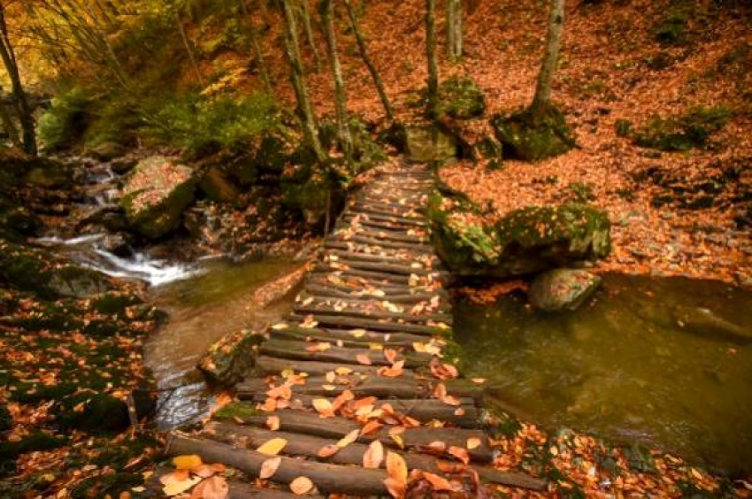 Oylat'ta sonbahar güzelliği