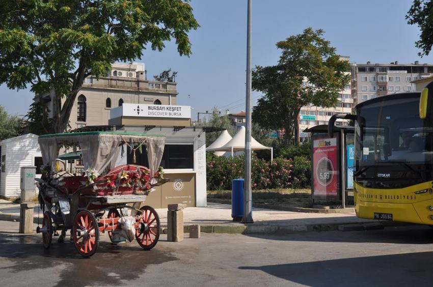 Bursa'da at dışkısı operasyonu!