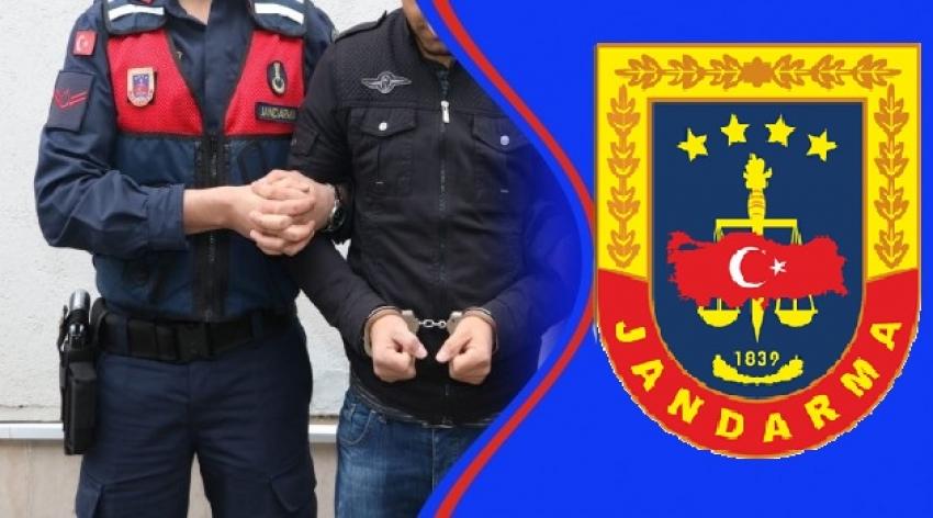 Bursa'da nitelikli yağmadan aranan suçlu jandarmadan kaçamadı